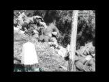 Discovery «Война и оружие (4). Шерман и Тигр» (Документальный, Документальный, 2007)
